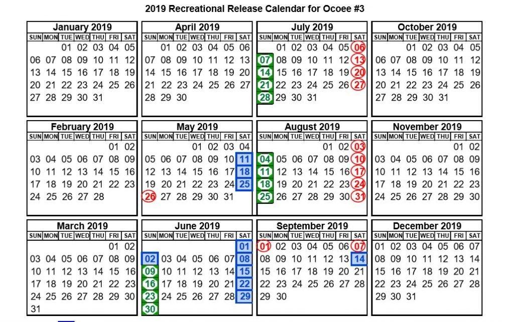Upper Ocoee River Release Schedule