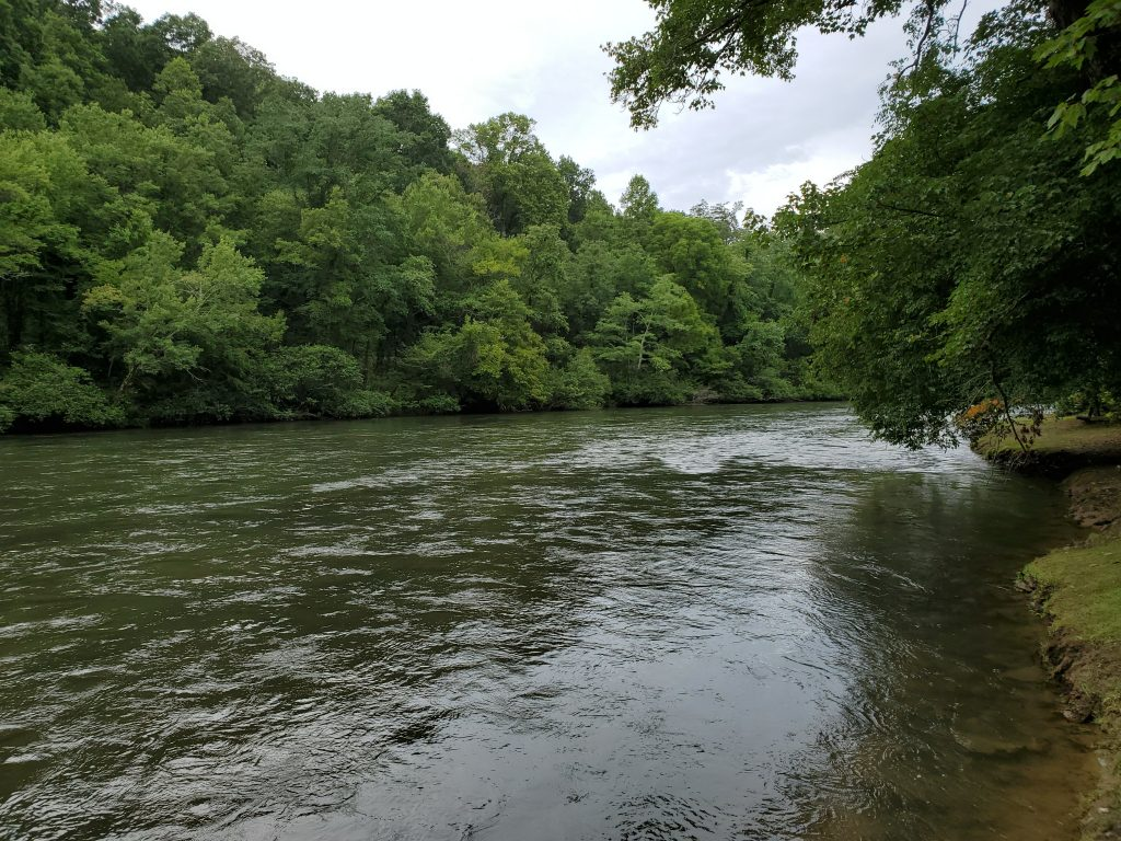 Toccoa River Fishing at Horseshoe Bend Park